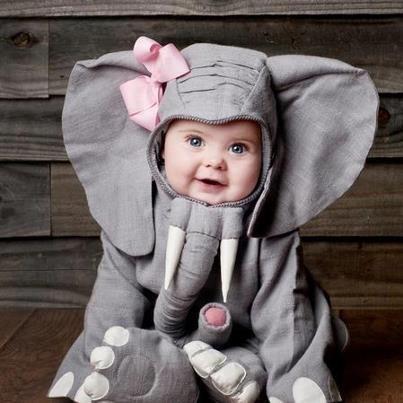 farsang - elefánt jelmez