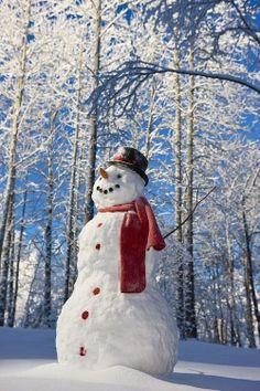 snowman8